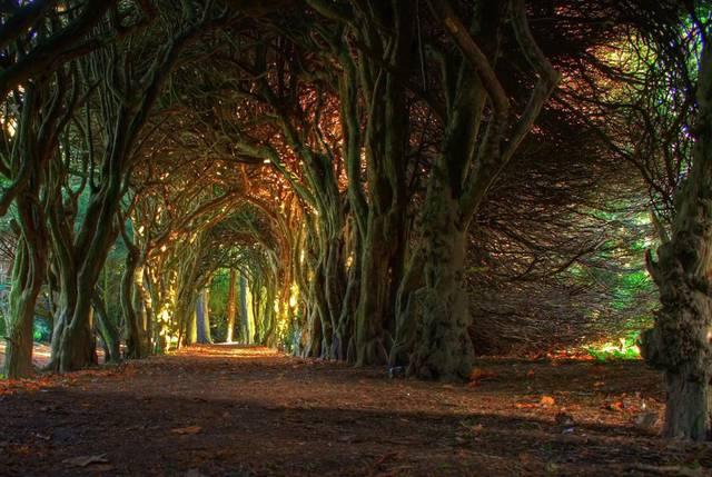 tunnel naturali
