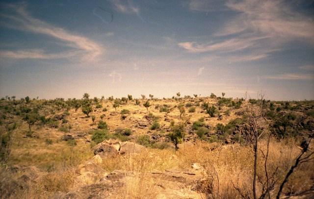 La zone di Riversleigh è patrimonio dell'UNESCO per la ricchezza di giacimenti fossili