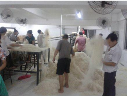 cina-fabbrica-noodles-foto