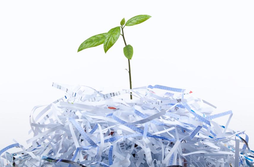 carta cartone reciclabile