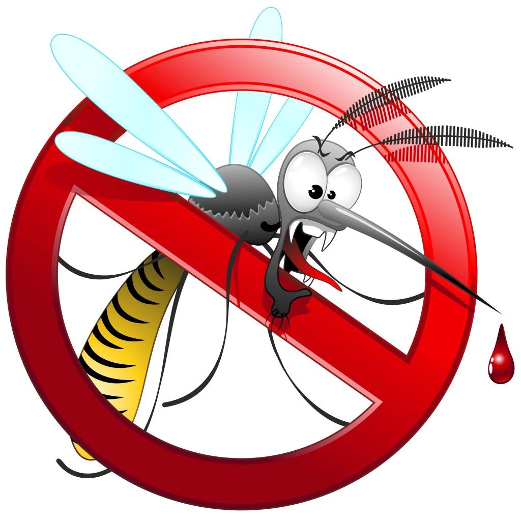 Punture di zanzare rimedi naturali per allontanarle e for Le zanzare non pungono i malati