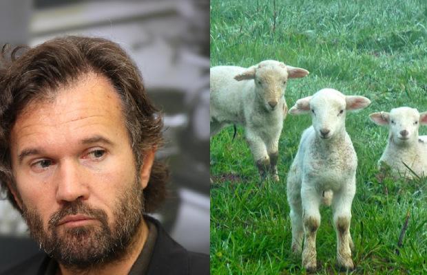 Carlo_Cracco-lercio-agnello-condito-da-vivo