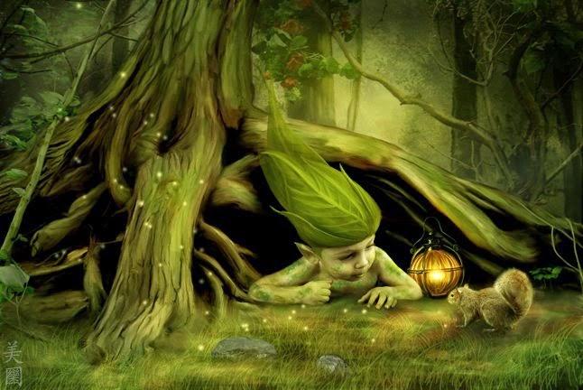 Gnomi e fate dei boschi gli avvistamenti in romagna della