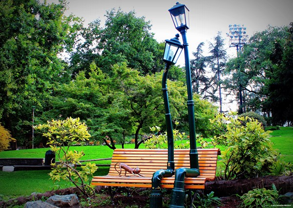 Parco del Valentino di Torino (fonte: facebook.com/alessandromandariniphotography)