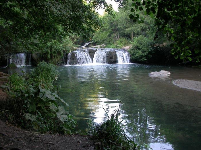 Parco Valle del Treja
