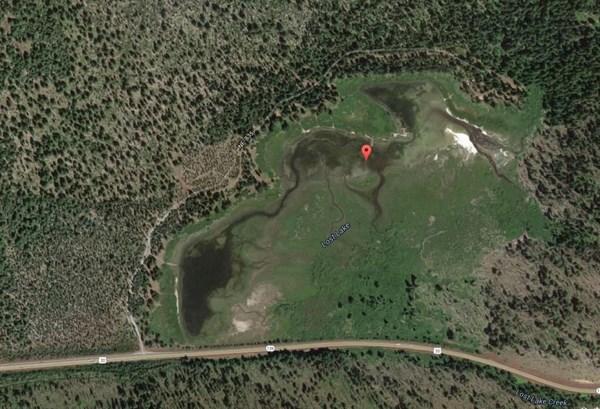 Il lago Lost visto da Google Maps