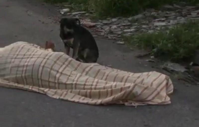Il corpo senza vita di Lorenzo Pederzoli, vegliato per ore dal suo fedele cane (www.today.it)