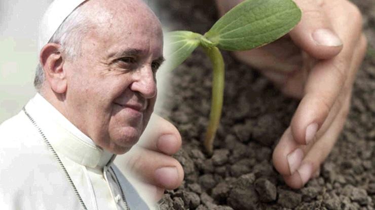 Francesco e l'ambiente: un'emergenza umana completa (stdavidandstpatrick)