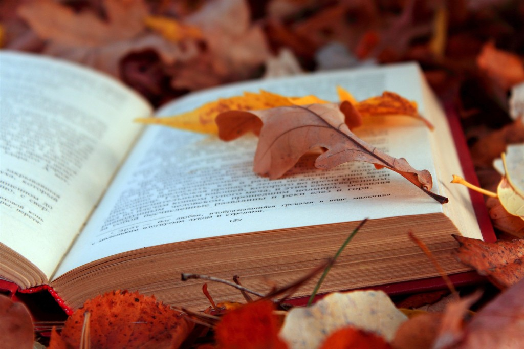 Un mese di settembre ricchissimo di festival letterari (www.it.forwallpaper.com)