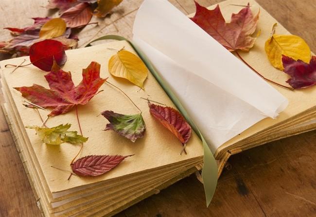 Novembre è un mese ricchissimo di festival letterari in tutta Italia (www.style.it)
