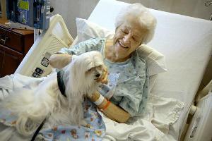 pet-therapy-foto
