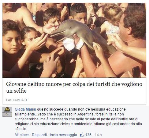 delfino morto per il selfie