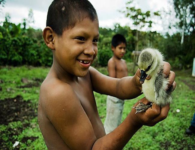 Il Costa Rica