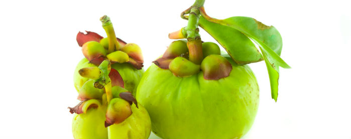 garcinia-cambogia-pianta-come-assumerla
