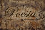 Poeti.com, quando la poesia si affaccia al digitale