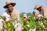 12 anni schiavo: l'orrore della schiavitù, tra storia e attualità