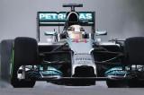 GP Malesia 2014: Hamilton vola sul bagnato, Alonso quarto