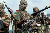 Localizzato il luogo in cui si trovano le ragazze rapite da Boko Haram