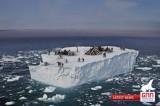 Grønland News Network: 'Avvistati 30 eschimesi su un iceberg'