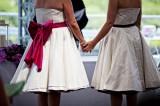 Da Adinolfi ai gay: tutti i dubbi sulle unioni civili