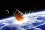 Non solo dinosauri: il meteorite favorì le piante decidue