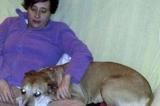 #SalvemosExcalibur. Abbattuto il cane della donna con l'Ebola