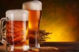 Il segreto per concepire un figlio? Un bicchiere di birra al giorno