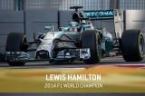 Formula 1, Abu Dhabi 2014: Lewis Hamilton è il Campione del Mondo Piloti!