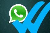 WhatsApp e quella spunta blu demenziale