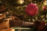 Letteratura&Co. I festival letterari di dicembre
