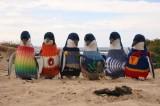 Centonove anni, Alfred Date protegge i pinguini cucendo loro maglioni