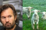 Carlo Cracco, l'agnello condito da vivo e Lercio. What else?