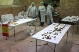 Studiosi affermano di aver trovato i resti di Miguel Cervantes
