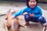 Vietnam: bimba perde il cane. Lo ritrova in negozio, cucinato