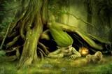 Gnomi e fate dei boschi. Gli avvistamenti in Romagna della Forestale