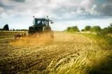 L'agricoltura: la nuova scommessa di Google