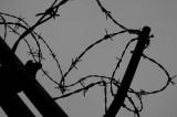 Ungheria. Il muro fa indignare i radical, ma il problema siamo noi