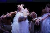 Ligabue incontra la danza di Aterballetto nello spettacolo Certe Notti
