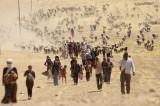 Non solo siriani: anche gli yazidi fuggono dalla guerra