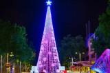 FOTO L'albero di Natale da record. 500mila luci illuminano Canberra