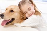 Pet therapy: un cane in ospedale come cura per la padrona