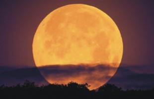 14 novembre 2016, Superluna da record: ecco i dettagli sul fenomeno
